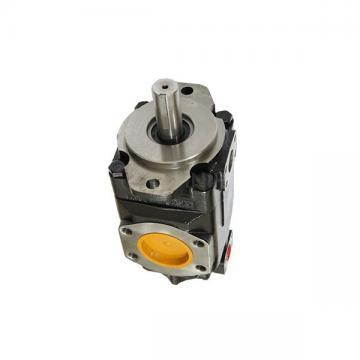 Denison PV20-2L5D-C00 Variable Displacement Piston Pump