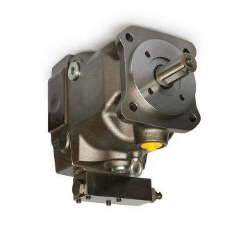 Parker PV016R1D3T1EFWS Axial Piston Pump