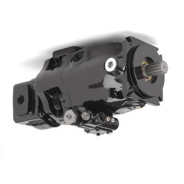 Sumitomo QT51-100-A Gear Pump